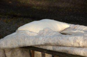 Lijkwade wol