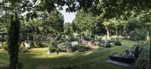 Begraafplaats de Woensberg Blaricum